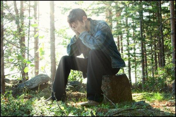 мемьет в лесу фото